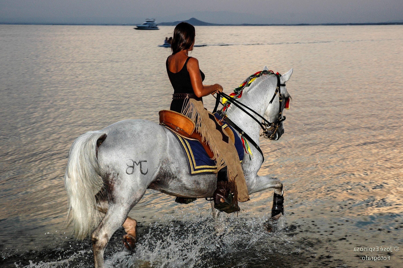 Horse Riding Calblanque