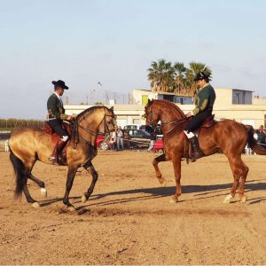 Andalusian-Horse-Show